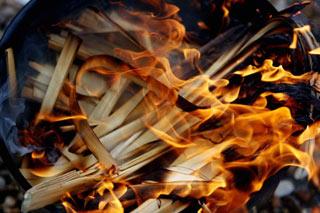 Burning of the Palms